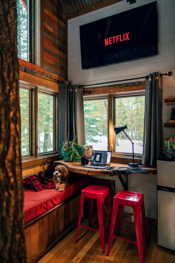 dog laying on bench in wood cabin with netflix on tv screen