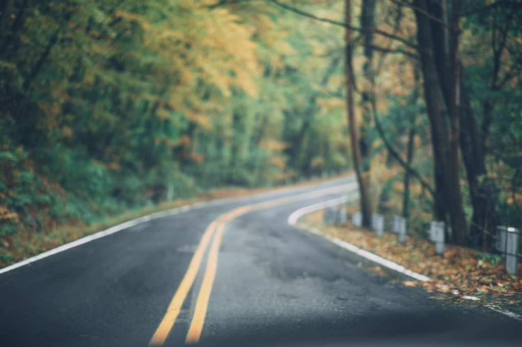 Winding Asphalt road in woods