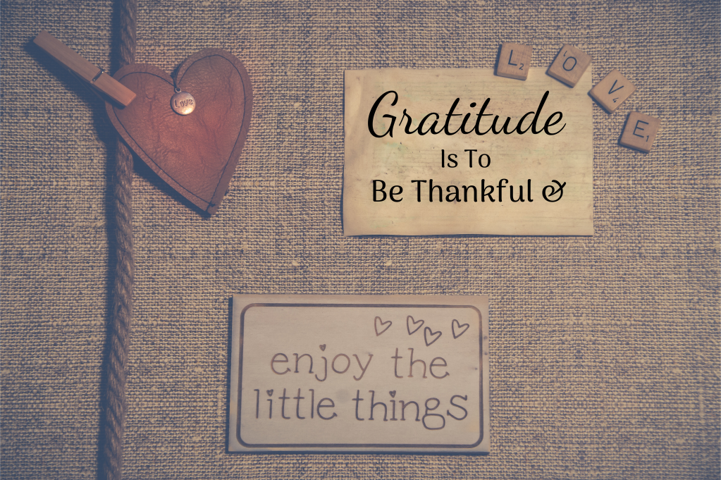 Gratitude Is To Be Thankful & Enjoy The Little Things